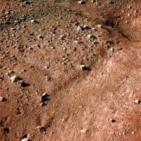 Одна из первых фотографий (в условном цвете), присланных Phoenix сразу после посадки (courtesy of NASA).