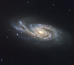Спиральная галактика NGC 908 в созвездии Кита (фото с сайта www.eso.org)